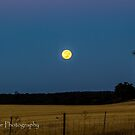 Moon over Dryandra woodlands by Rick Playle