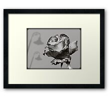 Black and White Red Rose Framed Print
