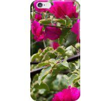 Bink iPhone Case/Skin