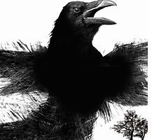 the raven by arteology