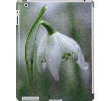 Awake, thou wintry earth! iPad Case/Skin