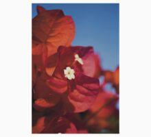 Sunlight Flower  One Piece - Short Sleeve