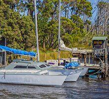 Walpole Inlet, Western Australia #3 by Elaine Teague