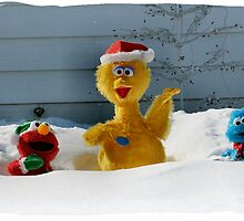 Sesame Street Snow Bound by Keala