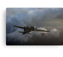 Taking the fight to the enemy Canvas Print