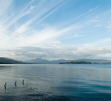Towards Ben Lomond by Anne Gilbert