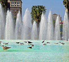 Long Beach Fountain Pool by Robert Meyers-Lussier