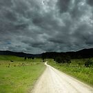 The Road Less Travelled -Sunshine Coast Qld Australia by Beth  Wode