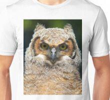 Great Horned owlet Unisex T-Shirt