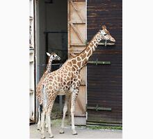 Giraffes at Dudley Zoo Classic T-Shirt
