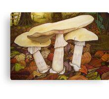 Deathcap Fungus Canvas Print