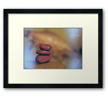 Sea shell and colored stones Framed Print