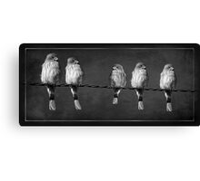 Little Birdies On A Wire Canvas Print
