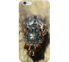 Who said flys are a pest! iPhone Case/Skin