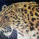 The Hunter by Samantha Norbury