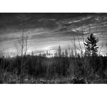 Monochrome Winter Sunrise Photographic Print
