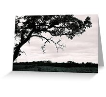 Where The Green Grass Grows Greeting Card