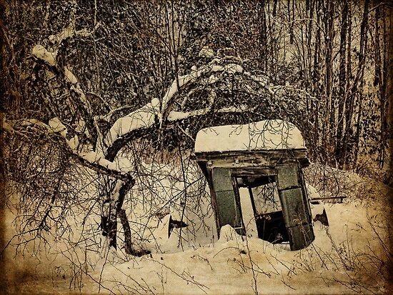 A Tree and its Shack by PineSinger