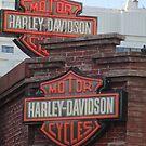 Neon Harley Davidson Signs by kkphoto1