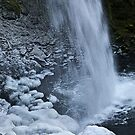 chill factor 2 by Bruce  Dickson