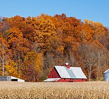 Farmland Autumn Hillside by Kenneth Keifer