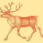 Deer by fennirose