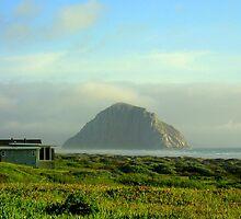 Moro Bay California by Diana Graves Photography