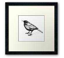 Day of the Organic Blackbirds Framed Print