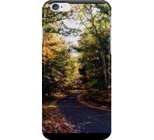 Fall Road iPhone Case/Skin