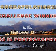 As Is Photography Challenge Banner by Wrayzo