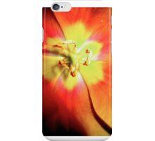 Burst iPhone Case/Skin