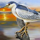Black-Crowned Night Heron At The Jordan by Phyllis Beiser