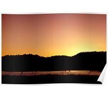 Last Light - Northern Tablelands Poster