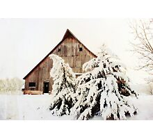First Snow Fall Photographic Print