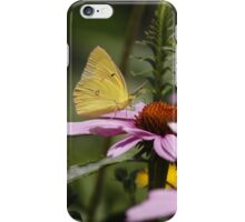 Garden  iPhone Case/Skin