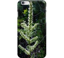 Blooming Swamp Onion iPhone Case/Skin