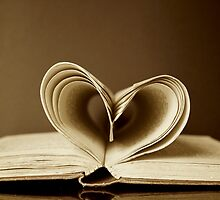 love heart book by shootingnelly