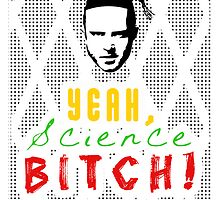 Breaking Bad Yeah Science Bitch! by raeuberstochter