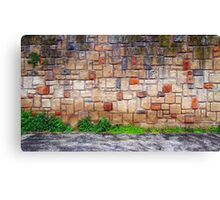 the wall Canvas Print