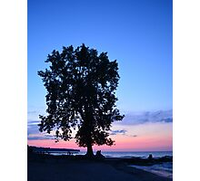 Beach at Dusk With Tree Photographic Print