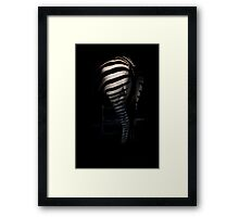 Lines Of a Zebra  Framed Print