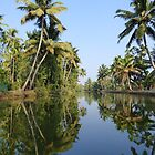Backwaters Kerala by solena432