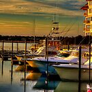 Evening at the Marina by imagetj