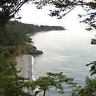 Deception Pass West by Mike Cressy