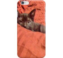 Figgaro Playing Peek-a-boo iPhone Case/Skin
