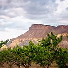 Palisades Peach Grove by RondaKimbrow
