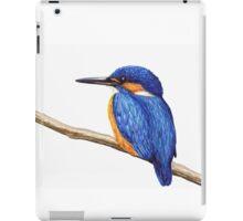 Kingfisher iPad Case/Skin