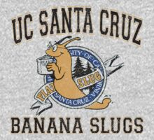 UC Santa Cruz Banana Slugs by Conrad B. Hart