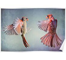 Dance of the Redbirds Poster