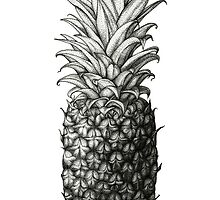 Pineapple by Suzannah Alexander